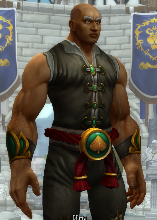 World of Warcraft — Поклонники негодуют из-за добавления ...